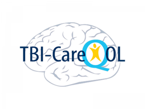 Health-Related Quality of Life in Caregivers of Traumatic Brain Injury: The Development of the TBI-CareQOL